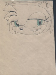 Amy Rose my first work.|by B_CANSIN