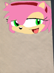 Amy Rose my first photo shop work(coloured)|by B_CANSIN