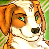John the collie's Avatar