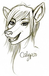 010610-calypso-sketch|by Calypso the Wolf