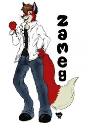 Zameg The Fox Ustream