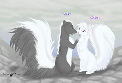 Skunks love|by Tassy