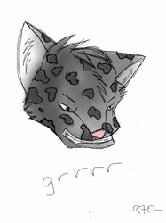 Grr|by Nekoli Snow Leopard