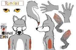 Randall's Ref Sheet|by Draugr