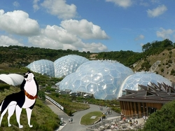 steele at the eden project|by Caesar the Dog