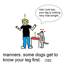 manners for wolves|by Caesar the Dog