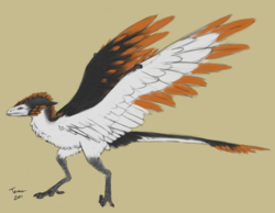 Feathered Wyvern Tereus