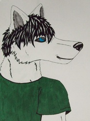 Kiba Pen/Marker|by KibaTheDemonicWolf