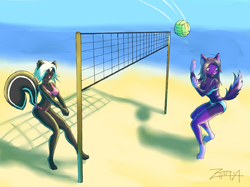 BEACH VOLLEY|by the-blackat