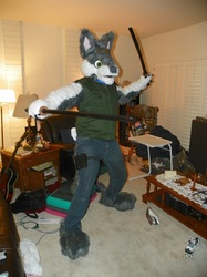 Don't mess with the ninja wolf