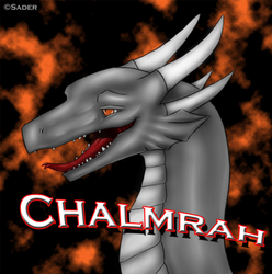 Derp Dragon|by Chalmrah