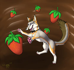 STRAWBERRY|by NavaronShiba