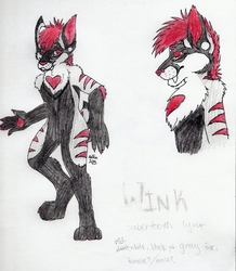 Wink Final Reference|by Silia Hollow