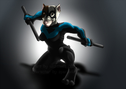 Nightwing!|by michimutt
