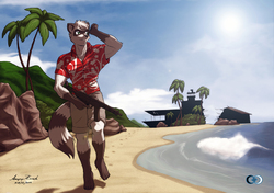 COMMISSION: Beach look-out