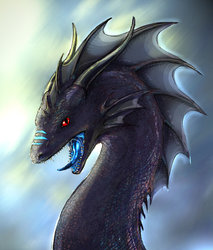 Dragon Portrait|by d3monstar