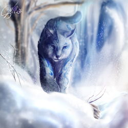 snow lynx|by shynjy