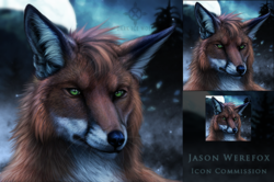 Jason Werefox Icon Commission|by JasonWerefox