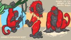 Corbel Reference Sheet by Bassclarineko|by RedApeGuy