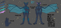 Xev Ref sheet|by Sionn Foxkey