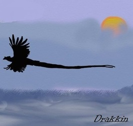 Flying Pheonix|by Drakkin