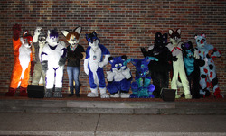 Suiters of the MassFurbowl
