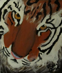 Tiger Painting|by TigerDusk