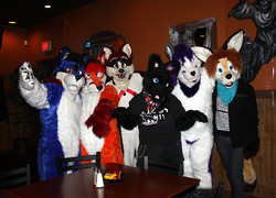 Fursuiters of the Party
