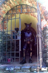 Leather Wolf at castle tower gate|by smash