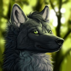LordWolfie|by LordWolfie
