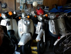 Used Japanese Scooters|by Tbohn
