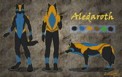 Aledaroth Reference Sheet|by TameraAli