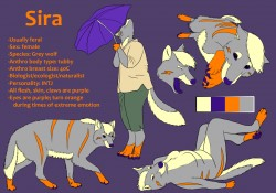 Sira reference April 2012|by LarkspurDragon