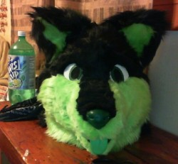 Rollik Fursuit head|by Rockit Fox