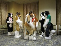 Anthrocon 2010 C|by Lupine Assassin