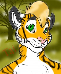 Tai the tiger|by WeregarurumonLover69