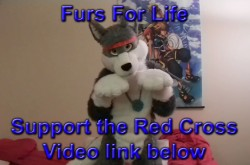 Furs For Life Intro Video|by FursForLife