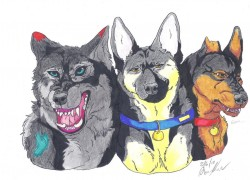 Fenrir, Bill and Storm|by Woofy16