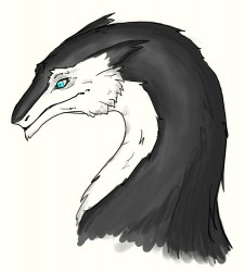 Sergal bust (sketch)|by MiXiT