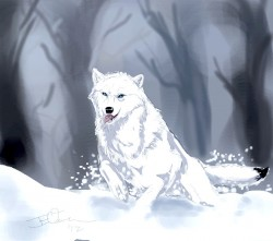 Dashing Through The Snow|by WaterSinger