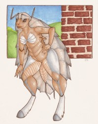 Pillbug Pinup|by TimeChaser