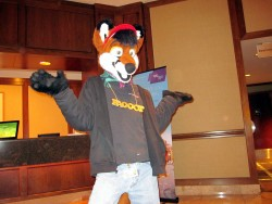 Anthrocon 2012 K|by Lupine Assassin