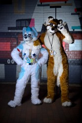 AC2012 Private Photoshoot: Kiowolf and SpazzyHusky|by tahoe_sushi