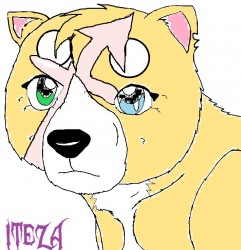 Ginga OC Iteza (Sagittarius)|by SurvivingEmber