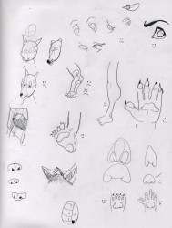 Trying to draw body parts|by ilbv