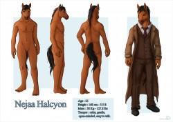 Nejaa Halcyon Reference Sheet|by Shalinka