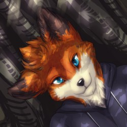 Visa fox headshot|by Doow