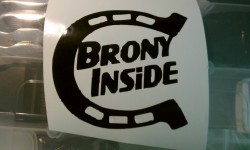 brony inside|by indy5brad