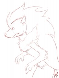 Zoroark Sketch|by IndiWolf