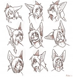 The Various Expressions of Monte